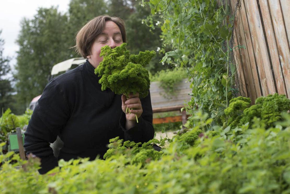 Kursholder er Tone Aandahl fra NIBIO Svanhovd. Kurset er rettet mot nybegynnere innen grønnsaksdyrking, men er åpent for alle interesserte.  Foto: Anette Tjomsland/NIBIO